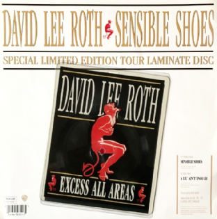 "David Lee Roth ‎- Sensible Shoes (7"") (Shaped Picture Disc) (VG-/NM)"